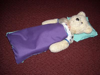 teddy sleeping bag