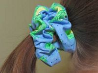hair scrunchy project